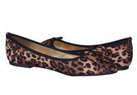 Kitten Cipele Cipele 1
