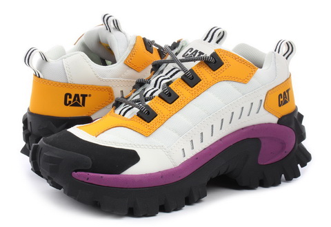 Cat Shoes Intruder
