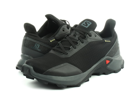 Salomon Shoes Alphacross Gtx
