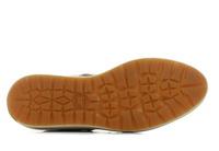 Cat Pantofi Olearia 1
