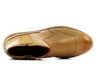 Cat Pantofi Olearia 2
