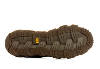 Cat Pantofi Electroplate 1